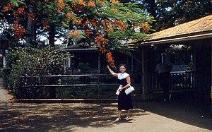 Waipahu, Hawaii - Waipahu Post Office, 1959