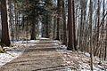 Waldweg zum Mal - panoramio.jpg