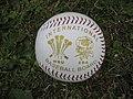 Wales Vs England Baseball International ball.jpg