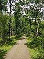 Wandelpad in Provinciaal Domein Vrieselhof 5.jpg