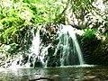 Waterfall in Fairy Glen - geograph.org.uk - 135881.jpg