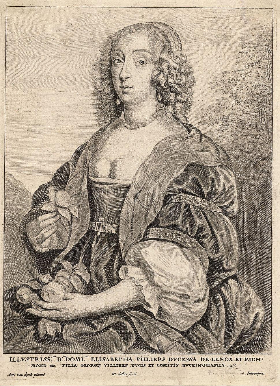 Wenceslas Hollar - Duchess of Lennox, after van Dyck (State 5)