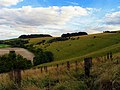 West Woodhay Down - geograph.org.uk - 59468.jpg