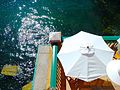 White Umbrella - panoramio.jpg