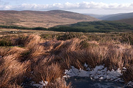 Landschap in de Wicklow Mountains