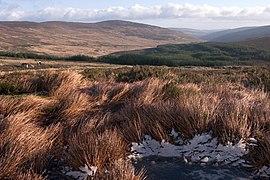Wicklow mountains.jpg