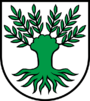 Coat of Arms of Widen