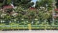 Wien 01 Volksgarten x.jpg