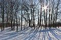 Winter scene - panoramio (2).jpg
