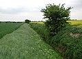 Wyton Drain - geograph.org.uk - 428569.jpg