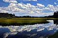 Yellowstone reflections.JPG