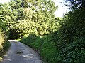 Yet another footpath junction at Bulverton - geograph.org.uk - 1496296.jpg