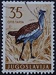 Yugoslavian stamp with Otis tarda 1958.jpg