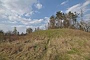Zaniklý hrad Rysov.jpg