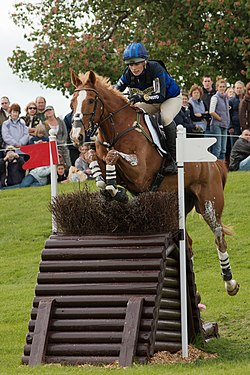 Zara Phillips mit Toytown