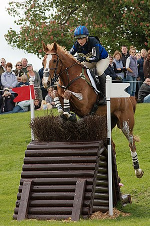 Toytown (horse) - Image: Zara phillips toytown alterian hillside badminton 2009