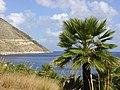 Zingaro Sicilia 2005-09-30-1.jpg