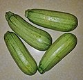 Zucchini - Massachusetts.jpg