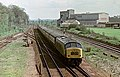 """Peak"" no. 45129, passing the site of Wigston Magna station, Nigel Tout, 4.5.75.jpg"