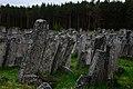 Єврейский цвинтар у передмісті м.Броди.jpg