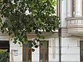 Будинок прибутковий, вул. Інститутська, 13-4.jpg
