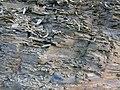 Гравітаційні складки, Чортківський район, Угринь-Синяково.jpg