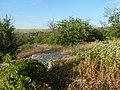 Заброшенный дачный посёлок - panoramio (61).jpg