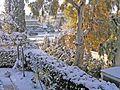 Зима в Афинах - panoramio (11).jpg