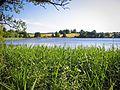 Озеро Угаринка - panoramio.jpg