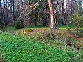 Ораниенбаум, Верхний парк03.jpg