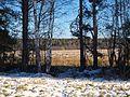 Первый снег - panoramio (1).jpg