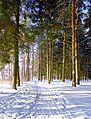 Рамешковский парк.jpg