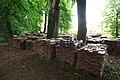 Резиденція буковинських митрополитів 140518 3198.jpg