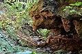 Сокілецькі водоспади - Кам'яна голова - 17086909.jpg