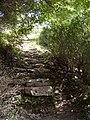 Მარტვილის კანიონის ბუნების ძეგლი.jpg
