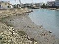 プチ干潟2 - panoramio.jpg