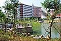 华南农业大学,昭阳湖风光f - panoramio.jpg
