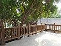 安平樹屋 Anping Tree House - panoramio (3).jpg