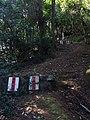 小北岭登山道 - Xiaobeiing Mountain Trail - 2014.07 - panoramio (1).jpg