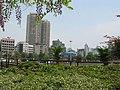河滨公园正门口花园 - panoramio (1).jpg