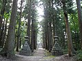 湯野神社の参道、本殿を望む 神様が通る道 - panoramio.jpg
