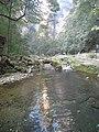金鞭溪 - panoramio.jpg