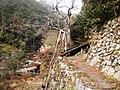 高山集落 - panoramio (24).jpg