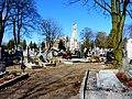 - Cmentarz Nowofarny - panoramio (3).jpg
