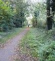 ... along side the Ebley bypass. - Flickr - BazzaDaRambler.jpg