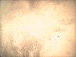 09-352.52.21 VMC Img No 25 (8269450504).png