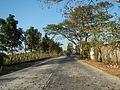 09550jfSampaloc Viola Highway Fields Capihan Roads Rafael Bulacanfvf 02.JPG