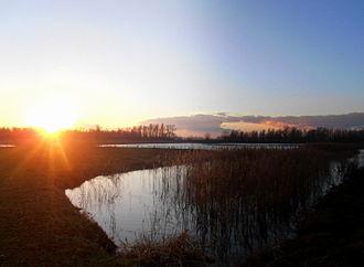 Biesbosch National Park - Sunset over the Biesbosch