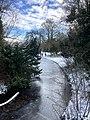 1099.Noorderplantsoen.Park.Ijs.Winter.Schaatsen.Sneeuw.Groningen.jpg