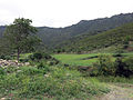 135 El paratge de l'Albera prop de Sant Quirze de Colera.JPG